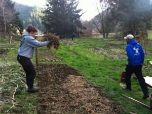 garliccomposting_SM