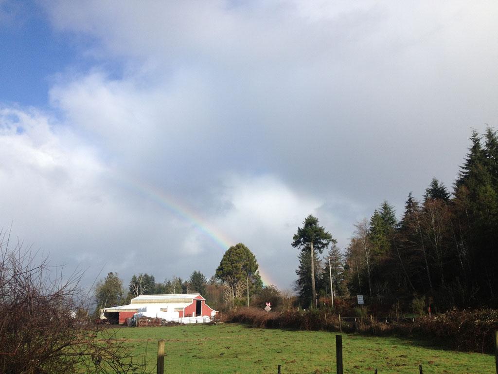 rainbowJoelsSM