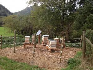 test_apiary_SM